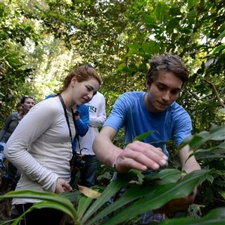 Explore the rain forests of Costa Rica and Panama firsthand, study marine life on Maine's Hurricane Island, further your language and culture studies in France, China, and French-speaking Canada.